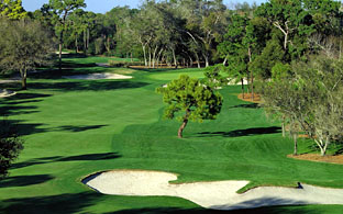 Innisbrook, Copperhead - Palm Harbor / Pinellas County